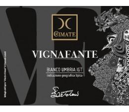 VIGNAFANTE - Umbria Bianco IGT
