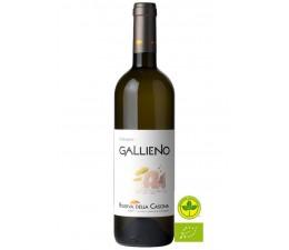 Gallieno - Malvasia Puntinata BIO